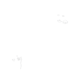 200x200-lancers-square-animal-clinic-plano-texas-logo-square-white