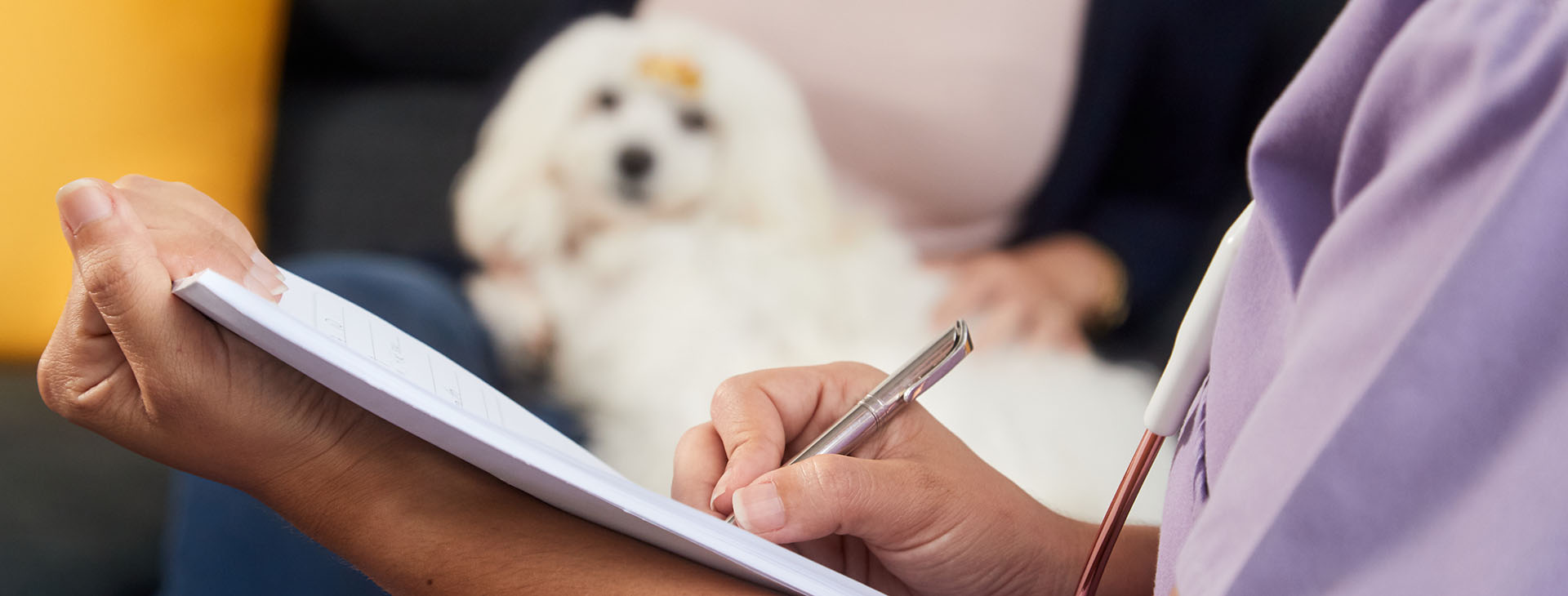veterinarian with clipboard and dog in background